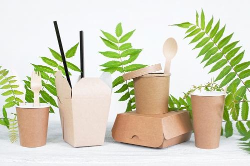 les meilleures vaisselles en palmier jetables sur lsbio